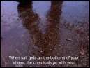 Salt on your shoes tracks the chemicals with your steps.